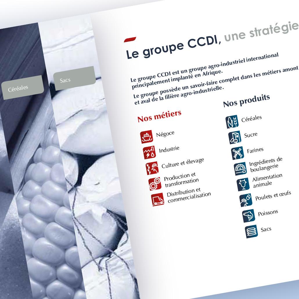 création identité de marque CCDI communication 360°