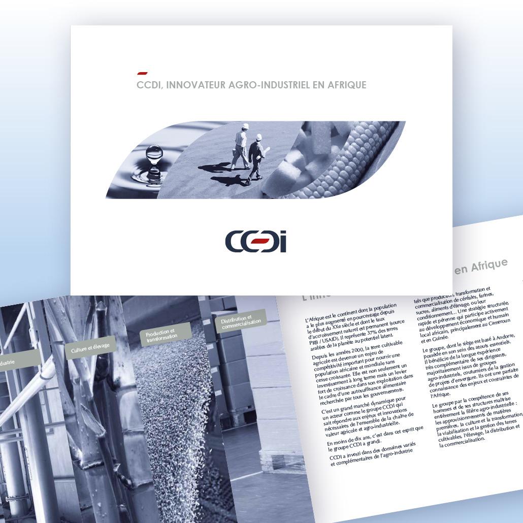 Positionnement de communication agence marquante Brochure institutionnelle bilingue CCDI