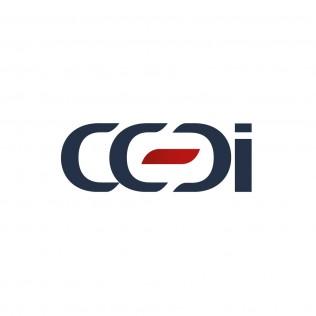 Positionnement de communication agence marquante Logo CCDI