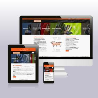 plateforme de marque communication-strategie rostaing site lead leader